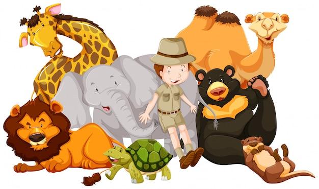 Animais selvagens e garoto safári