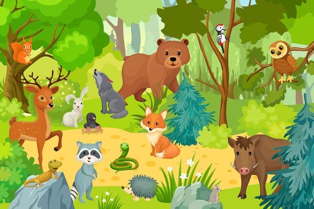 Animais selvagens na floresta.