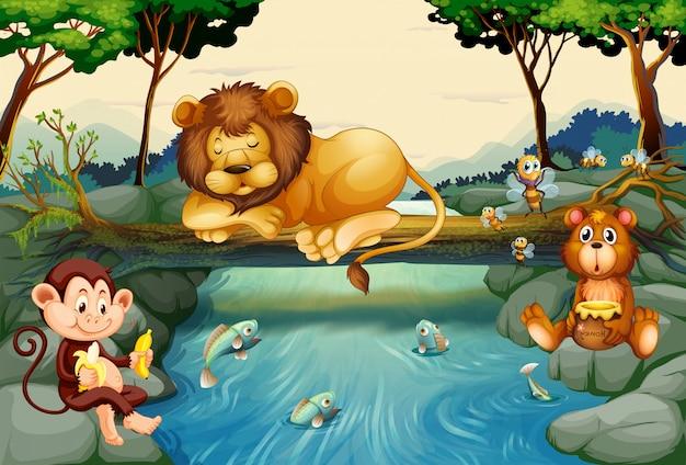 Animais selvagens no rio