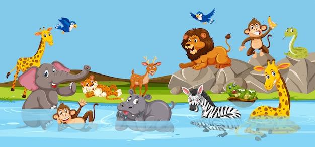 Animais selvagens que vivem ao lado do rio