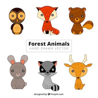 Animais tirados mão pequenos bonitos da floresta