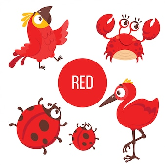 Animais vermelhos: papagaio, caranguejo, joaninha, pássaro.