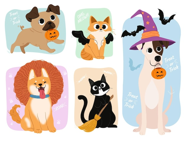 Animais vestidos com fantasias de halloween