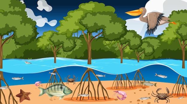 Animais vivem na floresta de mangue à noite