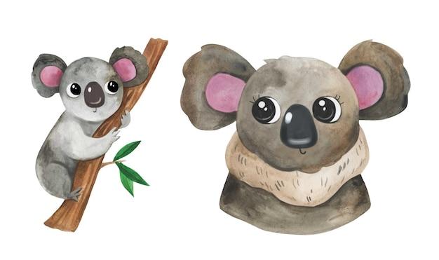 Animal bebê coala fofo urso desenhado a mão em aquarela