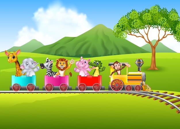 Animal bonito de áfrica no trem