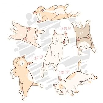 Animal bonito de gato pode voar
