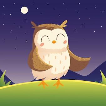Animal bonito dos desenhos animados do pássaro da coruja na grama à noite no céu.