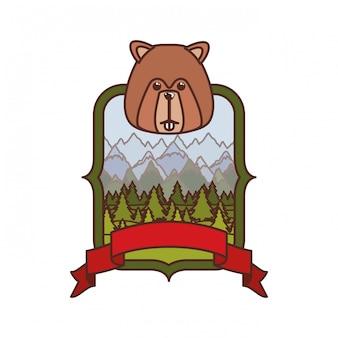 Animal de floresta castor do canadá