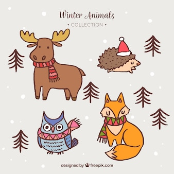 Animal de floresta de inverno