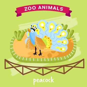 Animal do jardim zoológico, pavão
