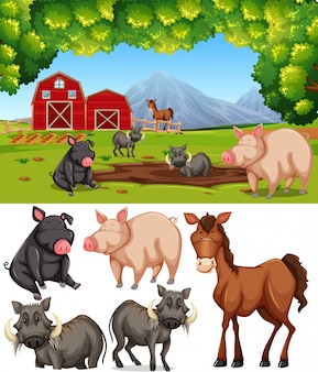 Animal fazenda, em, terra cultivada
