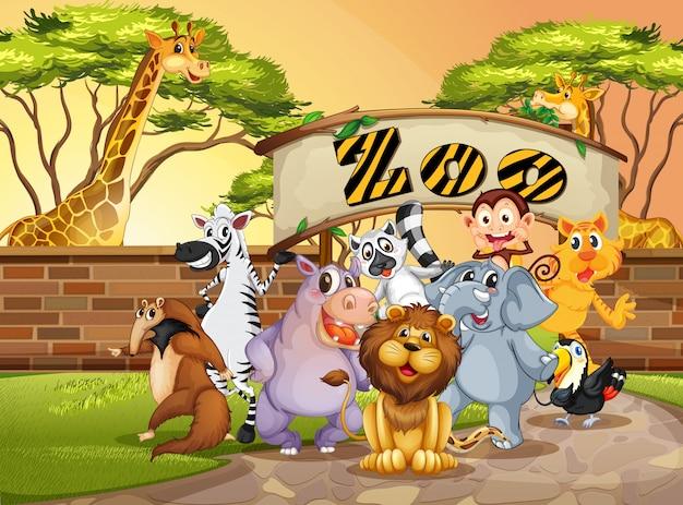 Animal feliz no zoológico