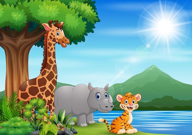 Animal selvagem brincando na paisagem natural