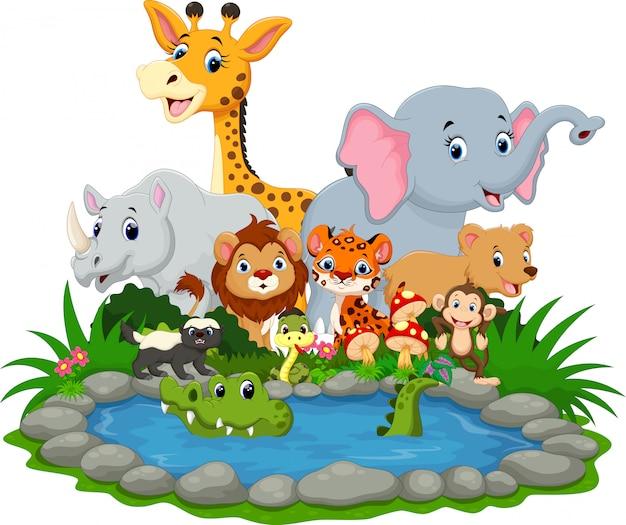 Animal selvagem com um crocodilo em um pequeno lago