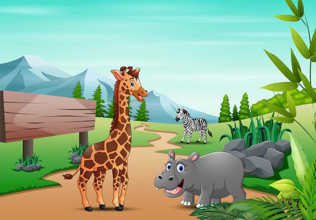 Animal selvagem dos desenhos animados, brincando na selva