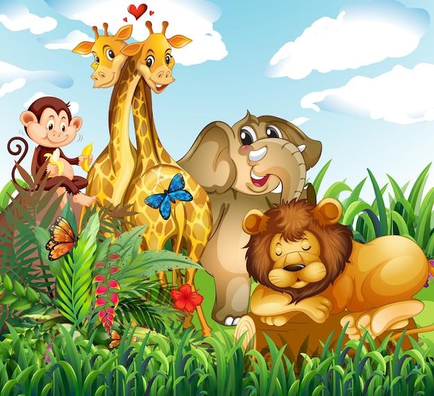 Animal selvagem na floresta
