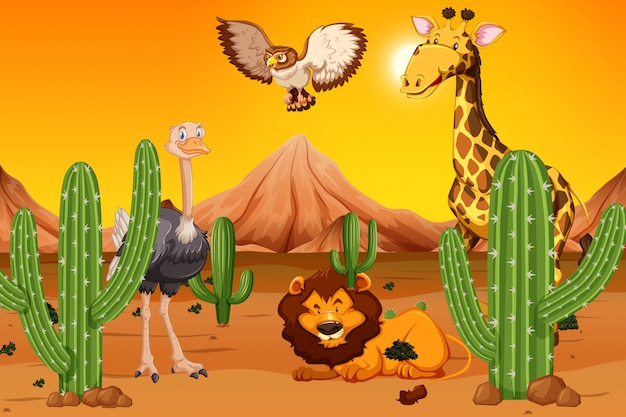 Animal selvagem no deserto