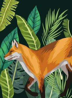 Animal selvagem raposa na cena da selva