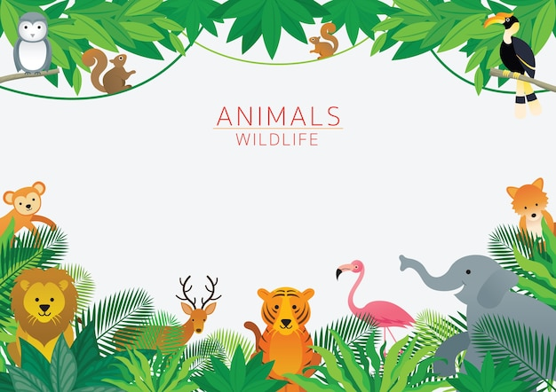 Animals and wilelife in jungle illustration