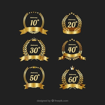 Aniversário do ouro elegante conjunto de etiquetas vector