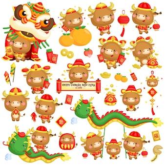 Ano novo chinês do ano do boi