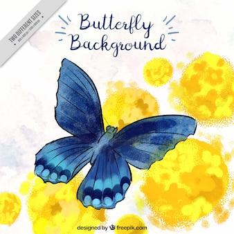 Antecedentes da borboleta azul no estilo da aguarela