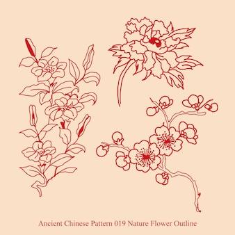 Antigo padrão chinês de contorno de flores naturais