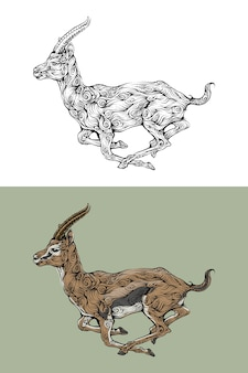 Antílope no estilo de desenho de mão encaracolado