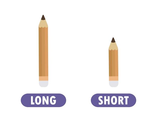 Antônimo da palavra oposta com lápis