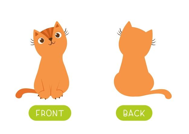 Antônimos educacionais cartão de palavras com gatos