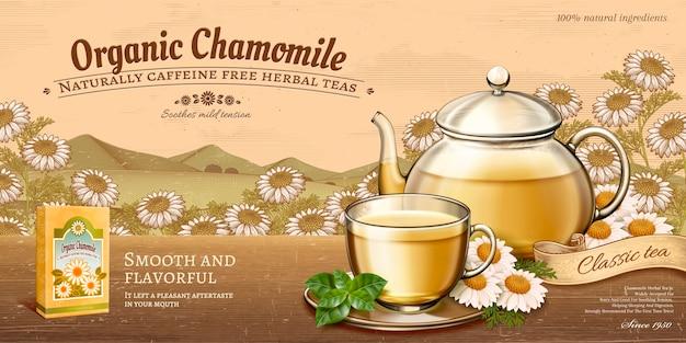 Anúncios de chá de camomila orgânico com bule de vidro colocado na mesa de madeira e campos florais em gravura retrô