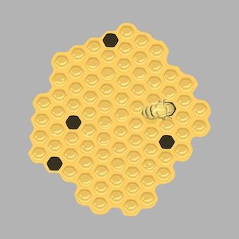 Apartamento de favo de mel