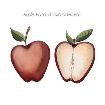 Apple mão coleção desenhada