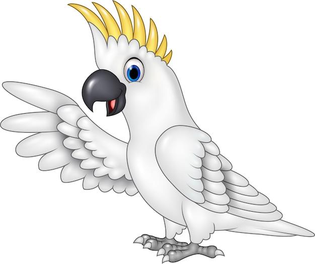 Apresentação de papagaio branco engraçado dos desenhos animados