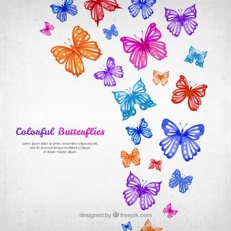 Aquarela borboletas coloridas fundo