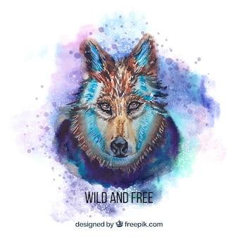 Aquarela cara de lobo perigoso