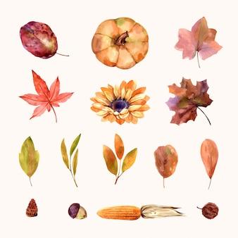 Aquarela, cartão de casamento, cartão de felicitações, outono conjunto de flores