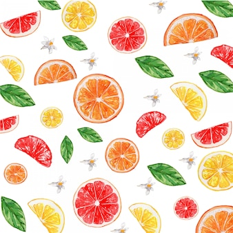 Aquarela cítrica limão laranja toranja flor sem costura padrão