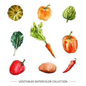 Aquarela coleção isolada de vegetais