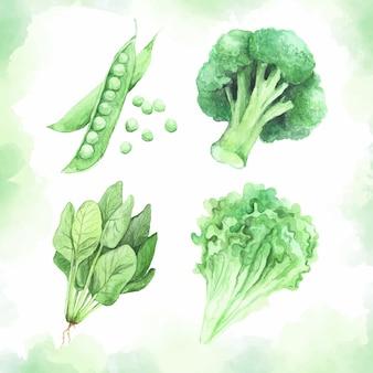 Aquarela conjunto de vegetais saudáveis