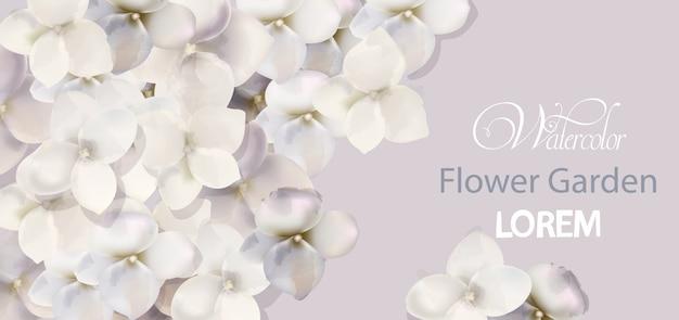 Aquarela de cartão de flores brancas