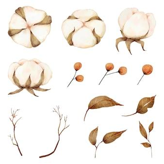 Aquarela de coleção de elementos de flores de algodão
