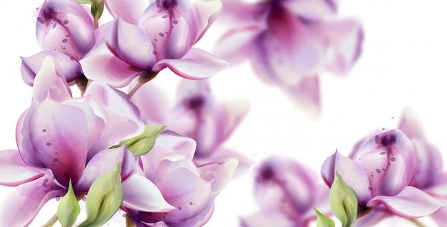 Aquarela de flores de orquídea.