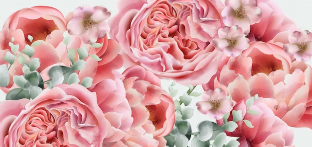 Aquarela de flores de primavera de peônia