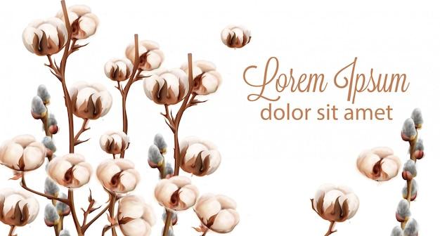 Aquarela de fundo de flores de algodão