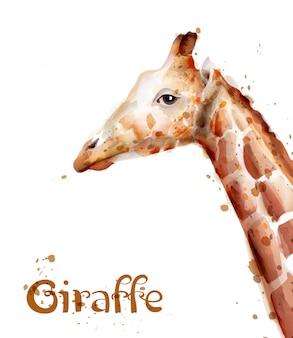 Aquarela de girafa