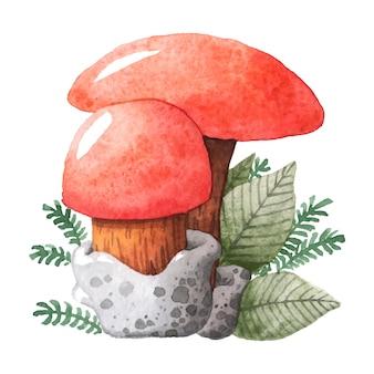 Aquarela de ilustração de cogumelo