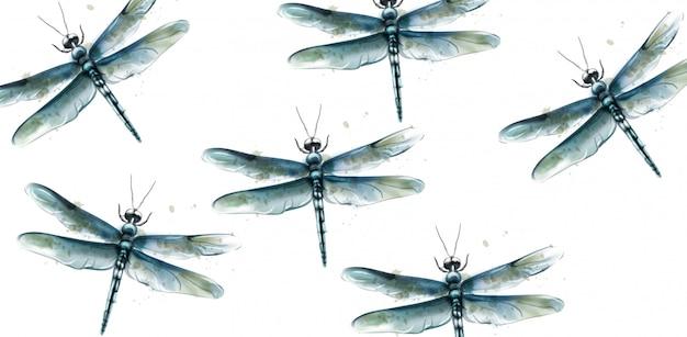Aquarela de mosca do dragão