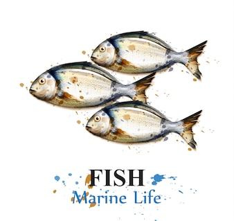 Aquarela de peixe pequeno